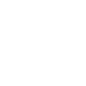 white-trainers-300